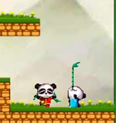 Две панды