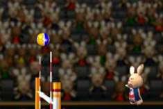 Волейбол кроликов